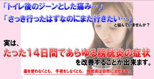 【福辻式】STOP膀胱炎DVDプログラム特典冊子付き 福辻鋭記の効果口コミ・評判レビュー